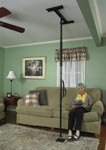 pole, easy pole, lift pole, assist pole, grab bar, home health care, Toronto, scarborough, Mississauga, Vaughan, east York, ajax, pickering, markham,